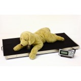 LW Measurements Large Veterinary Scale